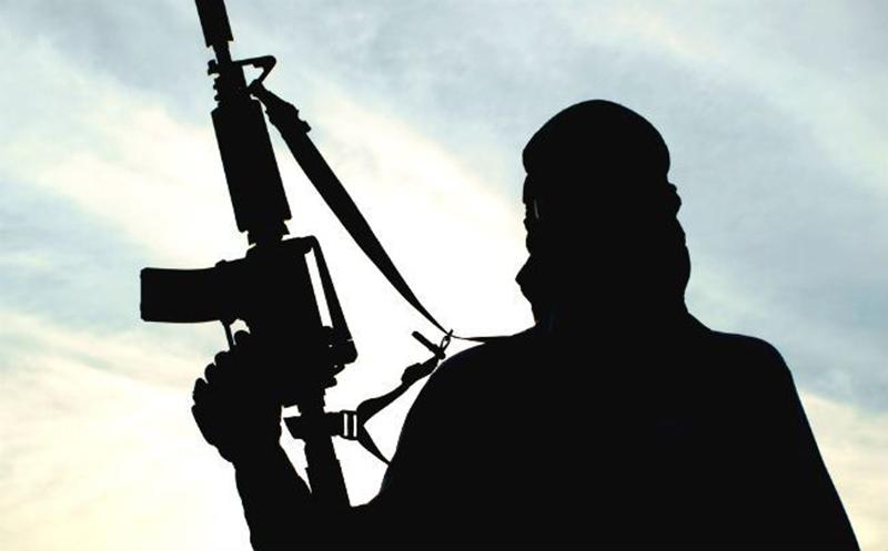 Terrorism: A DifferentPerspective