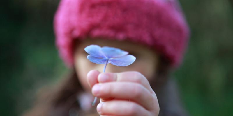 flower-for-you.jpg
