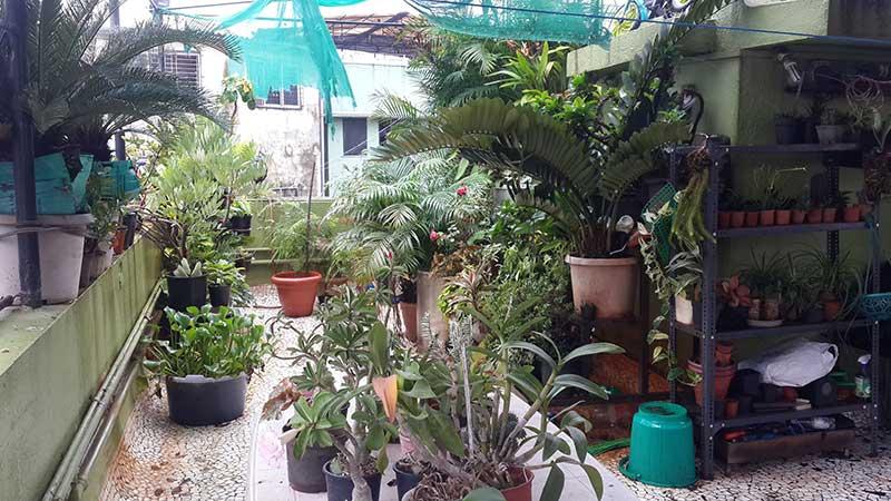 leon-garden-2.jpg