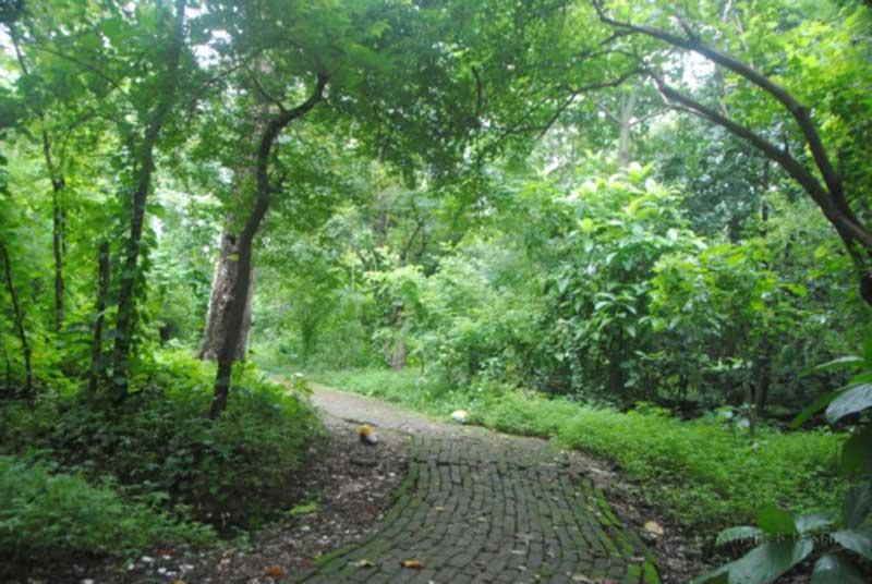 maharashtra-nature-park