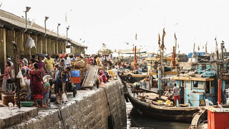 sassoon-dock.jpg