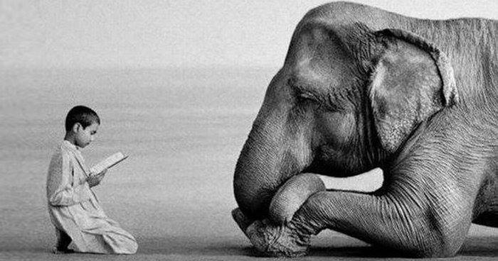 What Is Compassion? Is It Good ForYou?