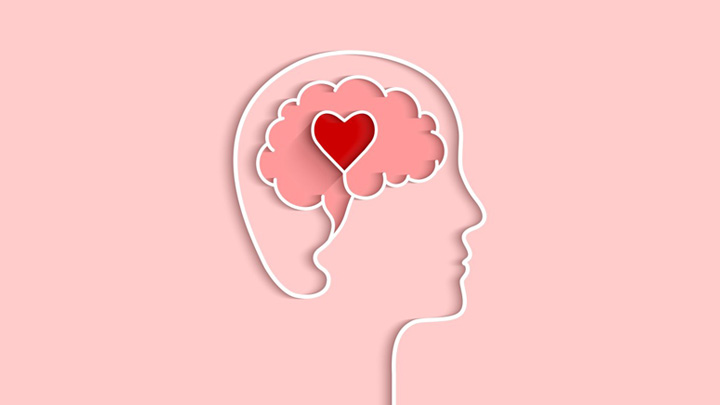 The Neuroscience ofLove